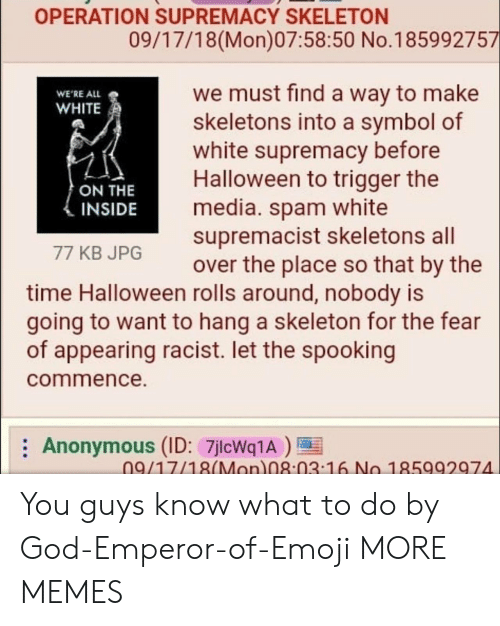 all white: OPERATION SUPREMACY SKELETON  09/17/18(Mon)07:58:50 No.185992757  we must find a way to make  skeletons into a symbol of  white supremacy before  Halloween to trigger the  media. spam white  supremacist skeletons all  over the place so that by the  WE'RE ALL  WHITE  ON THE  INSIDE  77 KB JPG  time Halloween rolls around, nobody is  going to want to hang a skeleton for the fear  of appearing racist. let the spooking  commence.  Anonymous (ID: 7jlcWq1A)  09/17/18(Mon 08:03 16 No 185992974 You guys know what to do by God-Emperor-of-Emoji MORE MEMES