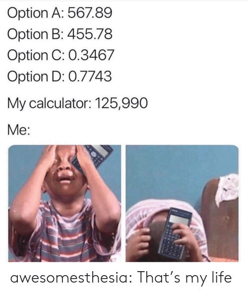 Life, Tumblr, and Blog: Option A: 567.89  Option B: 455.78  Option C: 0.3467  Option D: 0.7743  My calculator: 125,990  Me: awesomesthesia:  That's my life