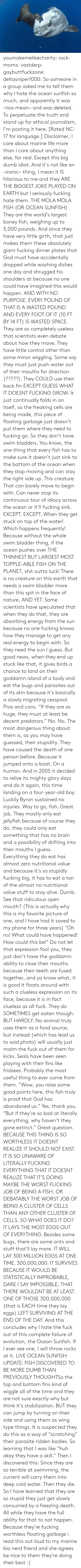 "Ironic: ORihad Herrma M  S youmakemelikecharity:  rock-moms:  vastderp:  gaybuttfuckzone:  deltasniper1000:  So someone in a group asked me to tell them why I hate the ocean sunfish so much, and apparently it was ~too mean~ and was deleted. To perpetuate the truth and stand up for ethical journalism, I'm posting it here. [Rated NC-17 for language.]  Disclaimer, I care about marine life more than I care about anything else, for real. Except this big dumb idiot. And it's not like an ~ironic~ thing, I mean it IS hilarious to me and they ARE THE BIGGEST JOKE PLAYED ON EARTH but I seriously fucking hate them.  THE MOLA MOLA FISH (OR OCEAN SUNFISH)  They are the world's largest boney fish, weighing up to 5,000 pounds. And since they have very little girth, that just makes them these absolutely giant fucking dinner plates that God must have accidentally dropped while washing dishes one day and shrugged his shoulders at because no one could have imagined this would happen. AND WITH NO PURPOSE. EVERY POUND OF THAT IS A WASTED POUND AND EVERY FOOT OF IT (10 FT BY 14 FT) IS WASTED SPACE.  They are so completely useless that scientists even debate about how they move. They have little control other than some minor wiggling. Some say they must just push water out of their mouths for direction (?????). They COULD use their back fin EXCEPT GUESS WHAT IT DOESNT FUCKING GROW. It just continually folds in on itself, so the freaking cells are being made, this piece of floating garbage just doesn't put them where they need to fucking go.   So they don't have swim bladders. You know, the one thing that every fish has to make sure it doesn't just sink to the bottom of the ocean when they stop moving and can stay the right side up. This creature. That can barely move to begin with. Can never stop its continuous tour of idiocy across the ocean or it'll fucking sink. EXCEPT. EXCEPT. When they get stuck on top of the water! Which happens frequently! Because without the whole swim bladder thing, if the ocean pushes over THE THINNEST BUT LARGEST MOST TOPPLE-ABLE FISH ON THE PLANET, shit outta luck! There is no creature on this earth that needs a swim bladder more than this spit in the face of nature, AND YET. Some scientists have speculated that when they do that, they are absorbing energy from the sun because no one fucking knows how they manage to get any real energy to begin with. So they need the sun I guess. But good news, when they end up stuck like that, it gives birds a chance to land on their goddamn island of a body and eat the bugs and parasites out of its skin because it's basically a slowly migrating cesspool. Pros and cons.   ""If they are so huge, they must at least be decent predators."" No. No. The most dangerous thing about them is, as you may have guessed, their stupidity. They have caused the death of one person before. Because it jumped onto a boat. On a human. And in 2005 it decided to relive its mighty glory days and do it again, this time landing on a four-year-old boy. Luckily Byron sustained no injuries. Way to go, fish. Great job.  They mostly only eat jellyfish because of course they do, they could only eat something that has no brain and a possibility of drifting into their mouths I guess. Everything they do eat has almost zero nutritional value and because it's so stupidly fucking big, it has to eat a ton of the almost no nutritional value stuff to stay alive. Dumb. See that ridiculous open mouth? (This is actually why this is my favorite picture of one, and I have had it saved to my phone for three years) ""Oh no! What could have happened! How could this be!"" Do not let that expression fool you, they just don't have the goddamn ability to close their mouths because their teeth are fused together, and ya know what, it is good it floats around with such a clueless expression on its face, because it is in fact clueless as all fuck.  They do SOMETIMES get eaten though. BUT HARDLY. No animal truly uses them as a food source, but instead (which has lead us to said photo) will usually just maim the fuck out of them for kicks. Seals have been seen playing with their fins like frisbees. Probably the most useful thing to ever come from them.   ""Wow, you raise some good points here, this fish truly is proof that God has abandoned us."" Yes, thank you. ""But if they're so bad at literally everything, why haven't they gone extinct."" Great question.   BECAUSE THIS THING IS SO WORTHLESS IT DOESNT REALIZE IT SHOULD NOT EXIST. IT IS SO UNAWARE OF LITERALLY FUCKING EVERYTHING THAT IT DOESNT REALIZE THAT IT'S DOING MAYBE THE WORST FUCKING JOB OF BEING A FISH, OR DEBATABLY THE WORST JOB OF BEING A CLUSTER OF CELLS THAN ANY OTHER CLUSTER OF CELLS. SO WHAT DOES IT DO? IT LAYS THE MOST EGGS OUT OF EVERYTHING. Besides some bugs, there are some ants and stuff that'll lay more. IT WILL LAY 300 MILLION EGGS AT ONE TIME. 300,000,000. IT SURVIVES BECAUSE IT WOULD BE STATISTICALLY IMPROBABLE, DARE I SAY IMPOSSIBLE, THAT THERE WOULDNT BE AT LEAST ONE OF THOSE 300,000,000 (that is EACH time they lay eggs) LEFT SURVIVING AT THE END OF THE DAY.   And this concludes why I hate the fuck out of this complete failure of evolution, the Ocean Sunfish. If I ever see one, I will throw rocks at it.   LIVE OCEAN SUNFISH UPDATE: FISH DISCOVERED TO BE MORE DUMB THAN PREVIOUSLY THOUGHTSo  the top and bottom fins kind of wiggle all of the time and they are not  sure exactly why but think it's stabilization. BUT they can jump by  turning on their side and using them as  wing type things. It is suspected they do this as a way of ""scratching""  their parasite ridden bodies. So learning that I was like ""huh okay they  have a skill."" Then I discovered this: Since they  are so terrible at swimming, the current will carry them into deep cold  water. Then they die. So I have learned that they are so stupid they  just get slowly consumed by a freezing death. All while they have the  full ability for that to not happen. Because they're fucking worthless  floating garbage    i read this out loud to my marine bio nerd friend and she agrees   be nice to them they're doing their best :("