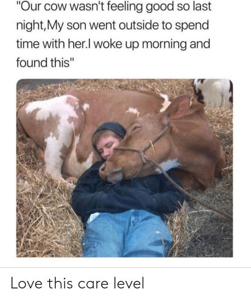 """Love, Good, and Time: """"Our cow wasn't feeling good so last  night,My son went outside to spend  time with her.I woke up morning and  found this"""" Love this care level"""