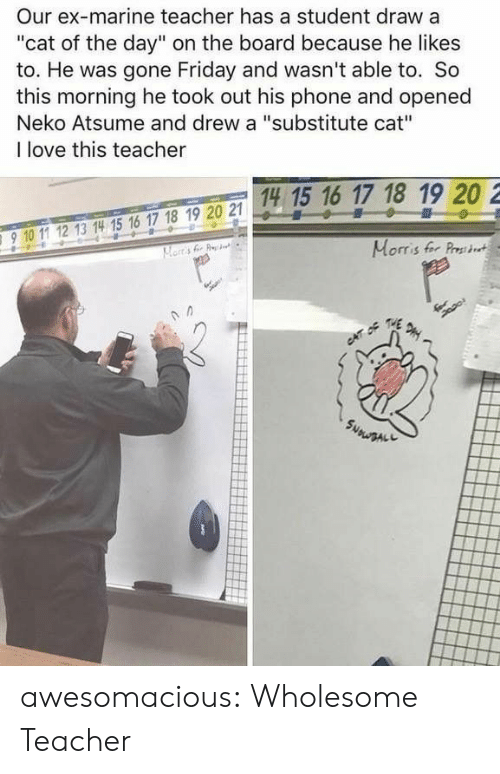 """Friday, Love, and Phone: Our ex-marine teacher has a student draw a  """"cat of the day"""" on the board because he likes  to. He was gone Friday and wasn't able to. So  this morning he took out his phone and opened  Neko Atsume and drew a """"substitute cat""""  I love this teacher  14 15 16 17 18 19 20 2  15 1  910 11 12 13 14 15 16 17 18 19 20 2  910 1 12 13 14 15 16 17 18 19 20 21  Morris fer Prst awesomacious:  Wholesome Teacher"""