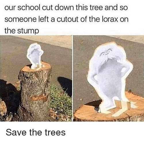 School, Tree, and Trees: our school cut down this tree and so  someone left a cutout of the lorax on  the stump Save the trees