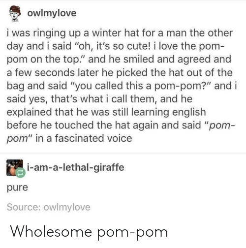 """Wholesome: owlmylove  i was ringing up a winter hat for a man the other  day and i said """"oh, it's so cute! i love the pom-  pom on the top."""" and he smiled and agreed and  a few seconds later he picked the hat out of the  bag and said """"you called this a pom-pom?"""" and i  said yes, that's what i call them, and he  explained that he was still learning english  before he touched the hat again and said """"pom-  pom"""" in a fascinated voice  i-am-a-lethal-giraffe  pure  Source: owlmylove Wholesome pom-pom"""