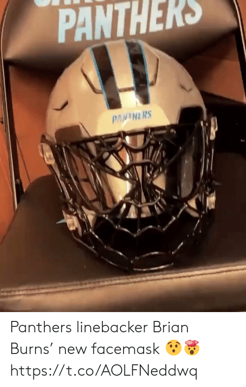 brian: PANTHERS  PANINERS Panthers linebacker Brian Burns' new  facemask 😯🤯 https://t.co/AOLFNeddwq