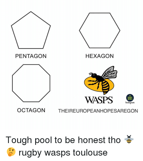 Memes Instagram: PENTAGON  HEXAGON  WASPS .  RUGBY  MEMES  Instagram  OCTAGON  THEIREUROPEANHOPESAREGON Tough pool to be honest tho 🐝🤔 rugby wasps toulouse