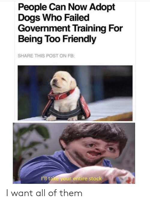 All Of Them: People Can Now Adopt  Dogs Who Failed  Government Training For  Being Too Friendly  SHARE THIS POST ON FB:  I'l take your entire stock I want all of them