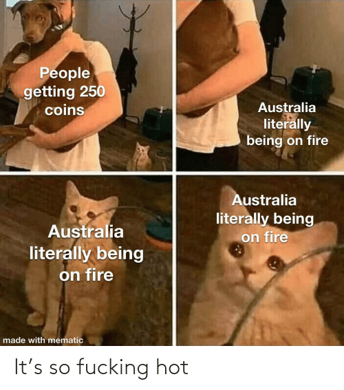 on fire: People  getting 250  coins  Australia  literally  being on fire  Australia  literally being  on fire  Australia  literally being  on fire  made with mematic It's so fucking hot