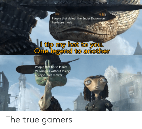 Zombies: People that defeat the Ender Dragon on  hardcore mode  I tip my hat to you,  One legend to another  People that finish Plants  Vs Zombies without losing  a single lawn mower  ERTS The true gamers
