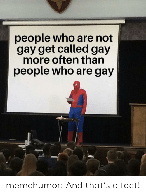 Tumblr, Blog, and Com: people who are not  gay get called gay  more often than  people who are gay memehumor:  And that's a fact!