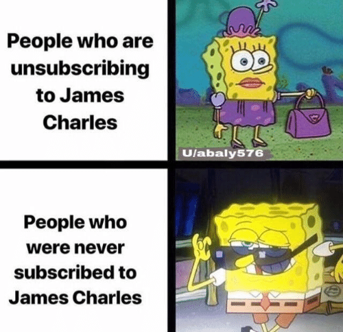 Memes, Never, and 🤖: People who are  unsubscribing  to James  Charles  Ulabaly576  People who  were never  subscribed to  James Charles