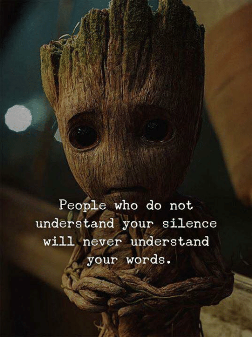 Never, Silence, and Who: People who do not  understand your silence  will never understand  your words