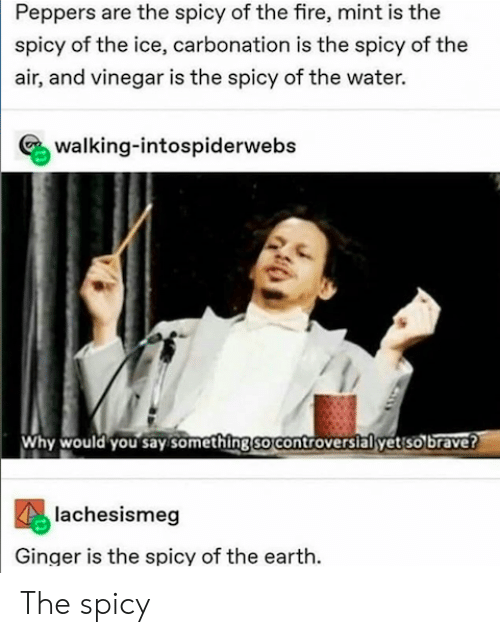 Fire, Brave, and Earth: Peppers are the spicy of the fire, mint is the  spicy of the ice, carbonation is the spicy of the  air, and vinegar is the spicy of the water.  walking-intospiderwebs  Why would you say somethingso controversialyet so brave?  lachesismeg  Ginger is the spicy of the earth. The spicy