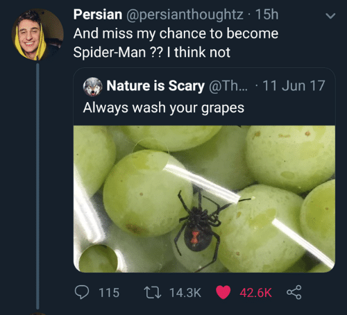 Dank, Spider, and SpiderMan: Persian @persianthoughtz 15h  And miss my chance to become  Spider-Man ?? I think not  Nature is Scary @Th... 11 Jun 17  Always wash your grapes  th 14.3K 42.6K  115