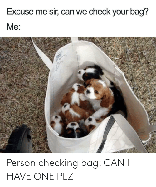 I Have: Person checking bag: CAN I HAVE ONE PLZ