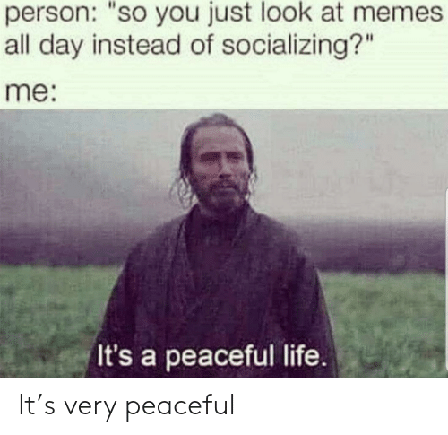 """mem: person: """"so you just look at mem  all day instead of socializing?""""  me:  It's a peaceful life. It's very peaceful"""