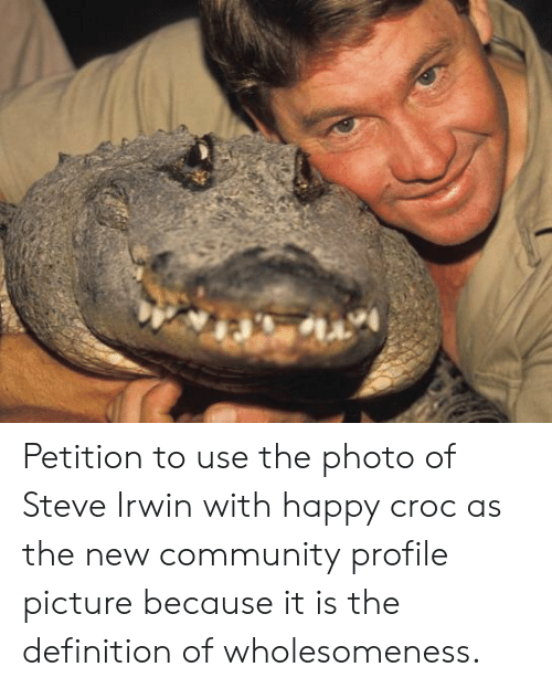 Community, Steve Irwin, and Definition: Petition to use the photo of Steve Irwin with happy croc as the new community profile picture because it is the definition of wholesomeness.