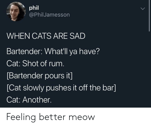 Cats, Sad, and Another: phil  @PhilJamesson  WHEN CATS ARE SAD  Bartender: Whatll ya have?  Cat: Shot of rum  Bartender pours it]  [Cat slowly pushes it off the bar]  Cat: Another. Feeling better meow