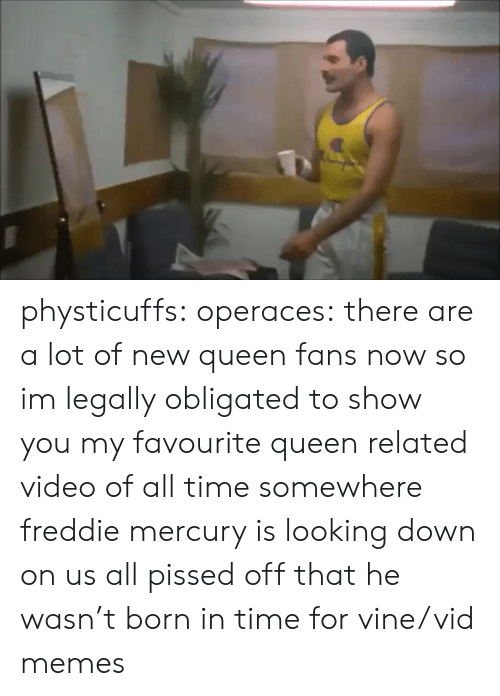 Freddie Mercury: physticuffs: operaces: there are a lot of new queen fans now so im legally obligated to show you my favourite queen related video of all time somewhere freddie mercury is looking down on us all pissed off that he wasn't born in time for vine/vid memes