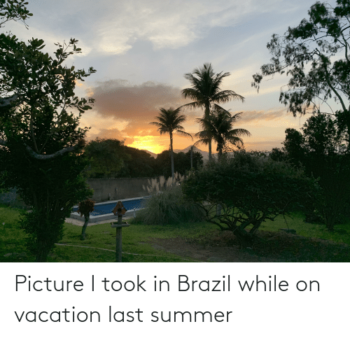 Vacation: Picture I took in Brazil while on vacation last summer