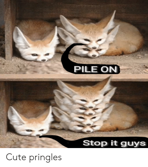 pile on: PILE ON  Stop it guys Cute pringles