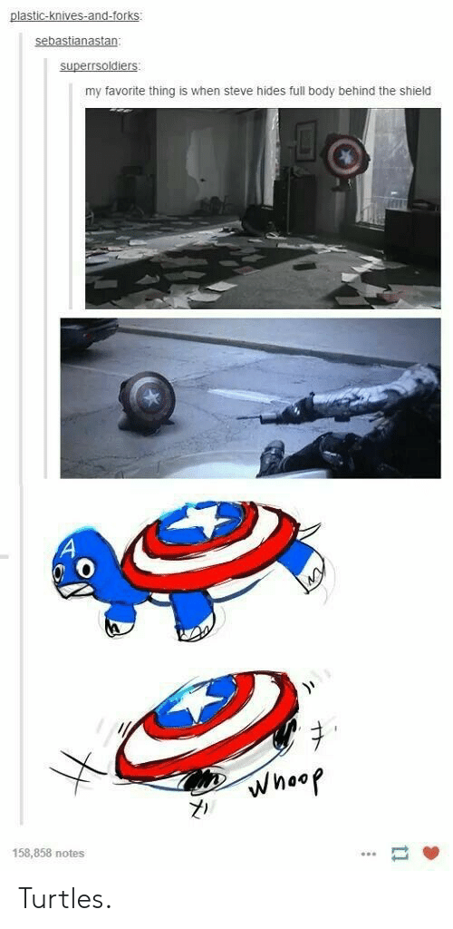 The Shield: plastic-knives-and-forks  my favorite thing is when steve hides full body behind the shield  158,858 notes Turtles.