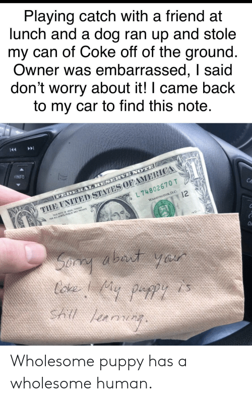 human: Playing catch with a friend at  lunch and a dog ran up and stole  my can of Coke off of the ground  Owner was embarrassed, I said  don't worry about it! I came back  to my car to find this note  INFO  CA  L 74802670 T  WASHINGTON,D.C.  THIS NOTE IS LEGAL TENDER Wholesome puppy has a wholesome human.