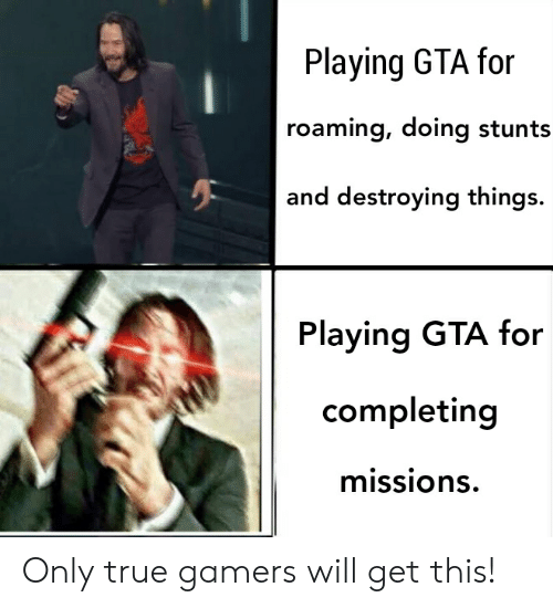 Reddit, True, and Gta: Playing GTA for  roaming, doing stunts  and destroying things.  Playing GTA for  completing  missions Only true gamers will get this!