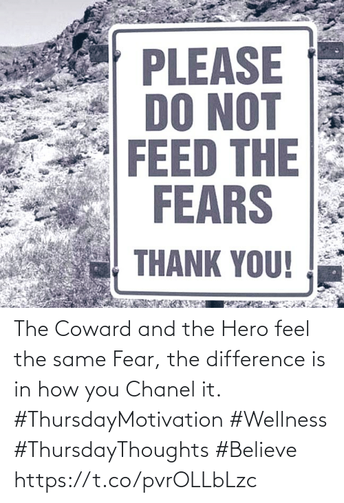 Love for Quotes: PLEASE  DO NOT  FEED THE  FEARS  THANK YOU! The Coward and the Hero feel the same Fear, the difference  is in how you Chanel it.  #ThursdayMotivation #Wellness  #ThursdayThoughts #Believe https://t.co/pvrOLLbLzc