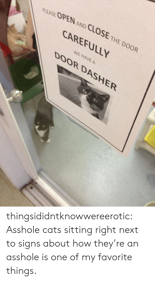 Favorite Things: PLEASE OPEN AND CLOSE THE DOOR  CAREFULLY  WE HAVE A  DOOR DASHER thingsididntknowwereerotic:  Asshole cats sitting right next to signs about how they're an asshole is one of my favorite things.