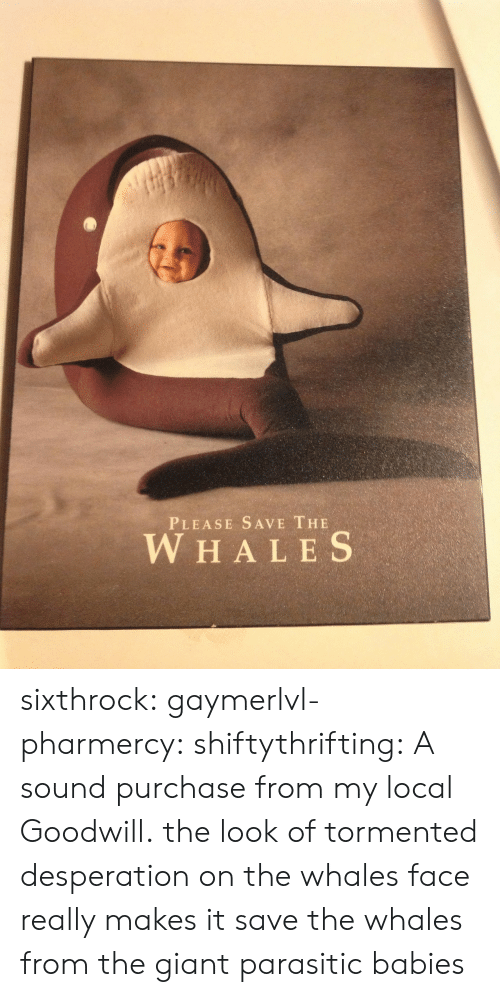 Desperation: PLEASE SAVE THE  W HALES sixthrock: gaymerlvl-pharmercy:  shiftythrifting:  A sound purchase from my local Goodwill.  the look of tormented desperation on the whales face really makes it   save the whales from the giant parasitic babies