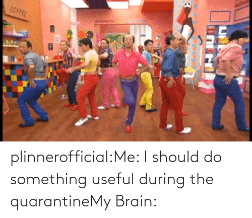 useful: plinnerofficial:Me: I should do something useful during the quarantineMy Brain: