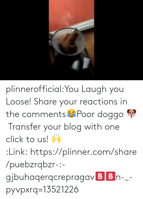 You Laugh: plinnerofficial:You Laugh you Loose! Share your reactions in the comments😂Poor doggo 🐶Transfer your blog with one click to us! 🙌 :Link:https://plinner.com/share/puebzrqbzr-:-gjbuhaqerqcrepragav🅱🅱n-_-pyvpxrq=13521226