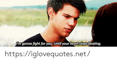 Fight, Net, and You: Pm gonna fight for you, Until your heartstops beating. https://iglovequotes.net/