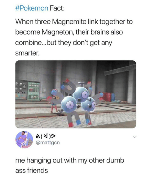 Ass, Brains, and Dumb:  #Pokemon Fact:  When three Magnemite link together to  become Magneton, their brains also  combine...but they don't get any  smarter.  @mattgcn  me hanging out with my other dumb  ass friends