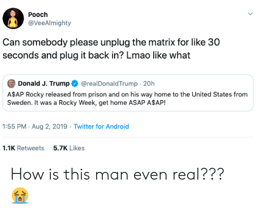 Rocky: Pooch  @VeeAlmighty  Can somebody please unplug the matrix for like 30  seconds and plug it back in? Lmao like what  Donald J. Trump  @realDonaldTrump 20h  A$AP Rocky released from prison and on his way home to the United States from  Sweden. It was a Rocky Week, get home ASAP A$AP!  1:55 PM Aug 2, 2019 Twitter for Android  5.7K Likes  1.1K Retweets How is this man even real??? 😭