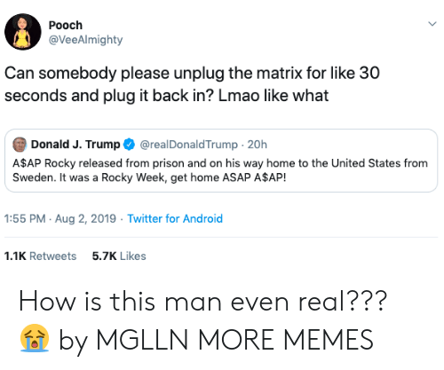 Rocky: Pooch  @VeeAlmighty  Can somebody please unplug the matrix for like 30  seconds and plug it back in? Lmao like what  Donald J. Trump  @realDonaldTrump 20h  A$AP Rocky released from prison and on his way home to the United States from  Sweden. It was a Rocky Week, get home ASAP A$AP!  1:55 PM Aug 2, 2019 Twitter for Android  1.1K Retweets  5.7K Likes How is this man even real??? 😭 by MGLLN MORE MEMES