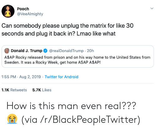 Rocky: Pooch  @VeeAlmighty  Can somebody please unplug the matrix for like 30  seconds and plug it back in? Lmao like what  Donald J. Trump  @realDonaldTrump 20h  A$AP Rocky released from prison and on his way home to the United States from  Sweden. It was a Rocky Week, get home ASAP A$AP!  1:55 PM Aug 2, 2019 Twitter for Android  1.1K Retweets  5.7K Likes How is this man even real??? 😭 (via /r/BlackPeopleTwitter)