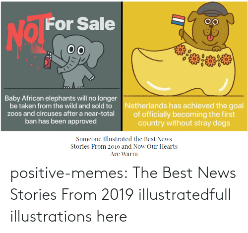 And Now: positive-memes:    The Best News Stories From 2019 illustratedfull illustrations here