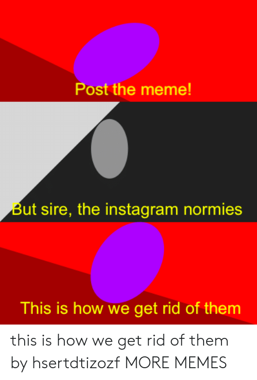 Dank, Instagram, and Meme: Post the meme!  But sire, the instagram normies  This is how we get rid of them this is how we get rid of them by hsertdtizozf MORE MEMES