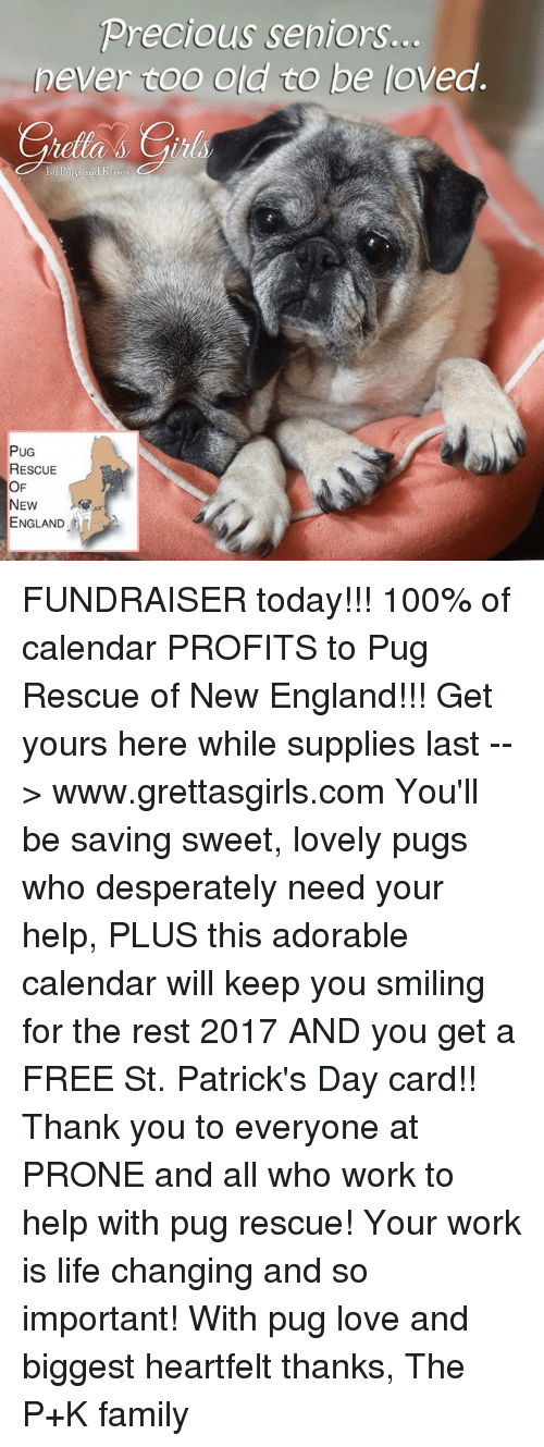 Heartfeltly: Precious seniors.  never coo old to be loved.  PUG  RESCUE  OF  NEW  ENGLAND FUNDRAISER today!!! 100% of calendar PROFITS to Pug Rescue of New England!!! Get yours here while supplies last --> www.grettasgirls.com You'll be saving sweet, lovely pugs who desperately need your help, PLUS this adorable calendar will keep you smiling for the rest 2017 AND you get a FREE St. Patrick's Day card!! Thank you to everyone at PRONE and all who work to help with pug rescue! Your work is life changing and so important! With pug love and biggest heartfelt thanks, The P+K family