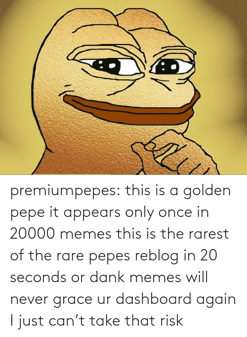 Dank, Memes, and Tumblr: premiumpepes:  this is a golden pepe it appears only once in 20000 memes this is the rarest of the rare pepes reblog in 20 seconds or dank memes will never grace ur dashboard again   I just can't take that risk