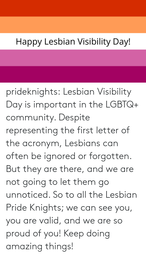 Amazing: prideknights:  Lesbian Visibility Day is important in the LGBTQ+ community. Despite representing the first letter of the acronym, Lesbians can often be ignored or forgotten. But they are there, and we are not going to let them go unnoticed. So to all the Lesbian Pride Knights; we can see you, you are valid, and we are so proud of you! Keep doing amazing things!