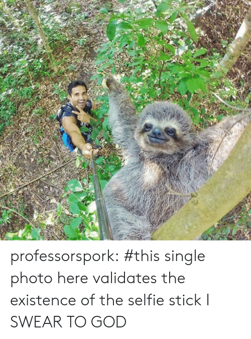 I Swear To God: professorspork:     #this single photo here validates the existence of the selfie stick I SWEAR TO GOD