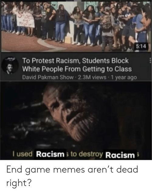 Memes, Protest, and Racism: Profie  5:14  To Protest Racism, Students Block  White People From Getting to Class  David Pakman Show 2.3M views 1 year ago  I used Racisms to destroy Racism End game memes aren't dead right?