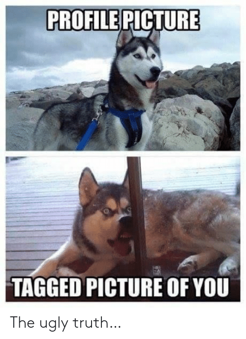 Profile Picture: PROFILE PICTURE  TAGGED PICTURE OF YOU The uglytruth…