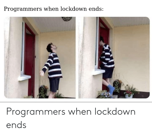 When: Programmers when lockdown ends