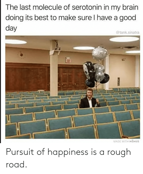 Happiness: Pursuit of happiness is a rough road.