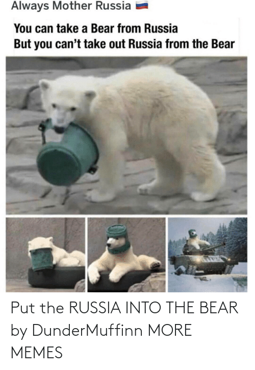 Put: Put the RUSSIA INTO THE BEAR by DunderMuffinn MORE MEMES