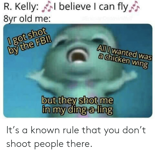 R. Kelly: R. Kelly: believe I can fly  8yr old me:  0 got shot  by the FB!  All Iwanted was  a chicken wing  but they shot me  in my ding-a-ling It's a known rule that you don't shoot people there.