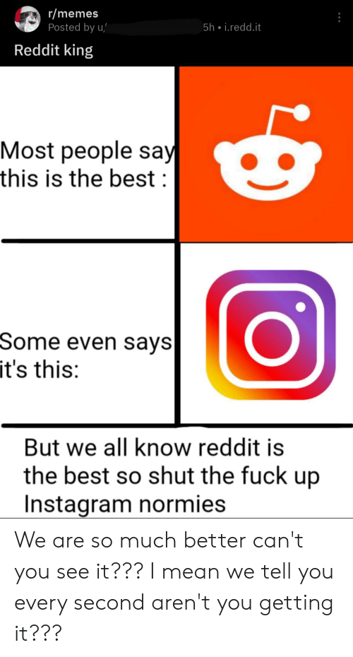 Instagram, Memes, and Reddit: r/memes  Posted by u/  5h • i.redd.it  Reddit king  Most people say  this is the best :  Some even says  it's this:  But we all know reddit is  the best so shut the fuck up  Instagram normies We are so much better can't you see it??? I mean we tell you every second aren't you getting it???